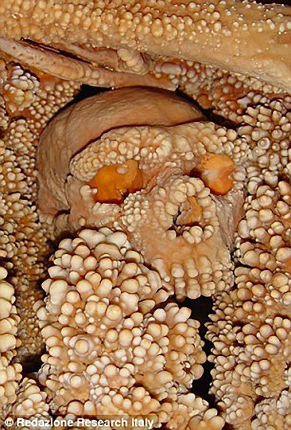 إعادة تشكيل وجه رجل عمره 150 ألف عام 3855-2.jpg